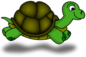 major-memor-1415-turtle