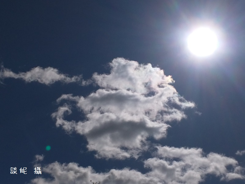 BH78-03-8174-圖1-談妮攝-2015-12-14 19.49.07