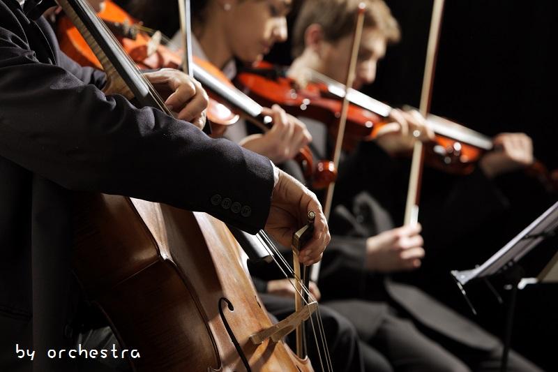 BH78-10-8248-圖04-orchestra W800