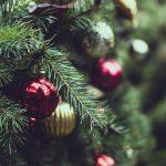 牧者恩言:過完聖誕節的牧羊人(主鑒)2019.01.08